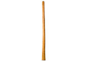 Gloss Finish Didgeridoo (TW1164)